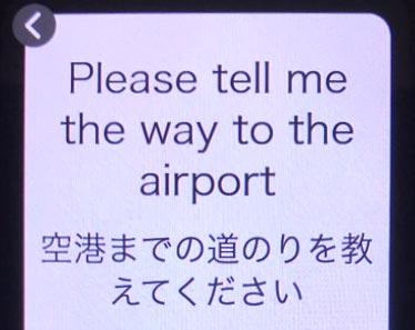 翻訳結果画面:1